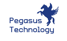 Pegasus Courier ERP StartUp